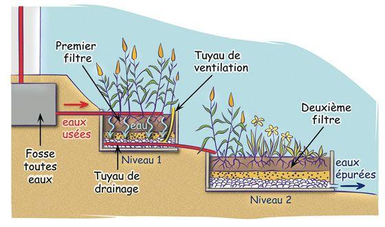 Une Solution Alternative La Phytoepuration Phytoepuration Traitement Des Eaux Usees Traitement Des Eaux