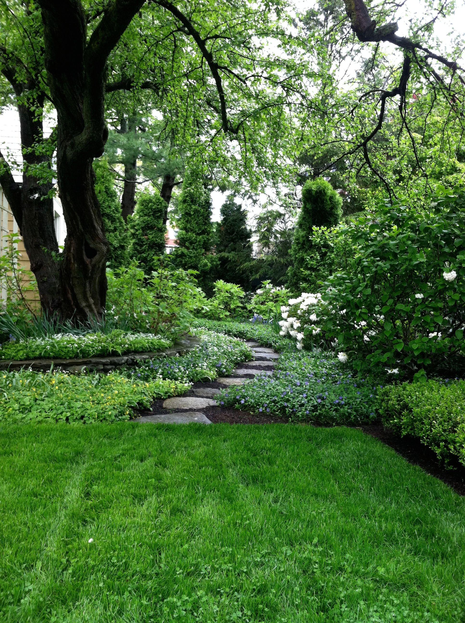A Perfectly Manicured Garden Shade Garden Woodland Garden