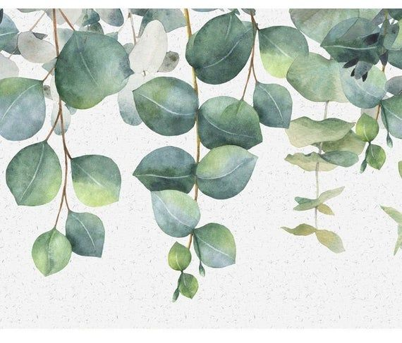 Modern Eucalyptus Wall Art Canvas For Home Decor Cactus Wall Art Wall Art Canvas Prints Succulents Prints
