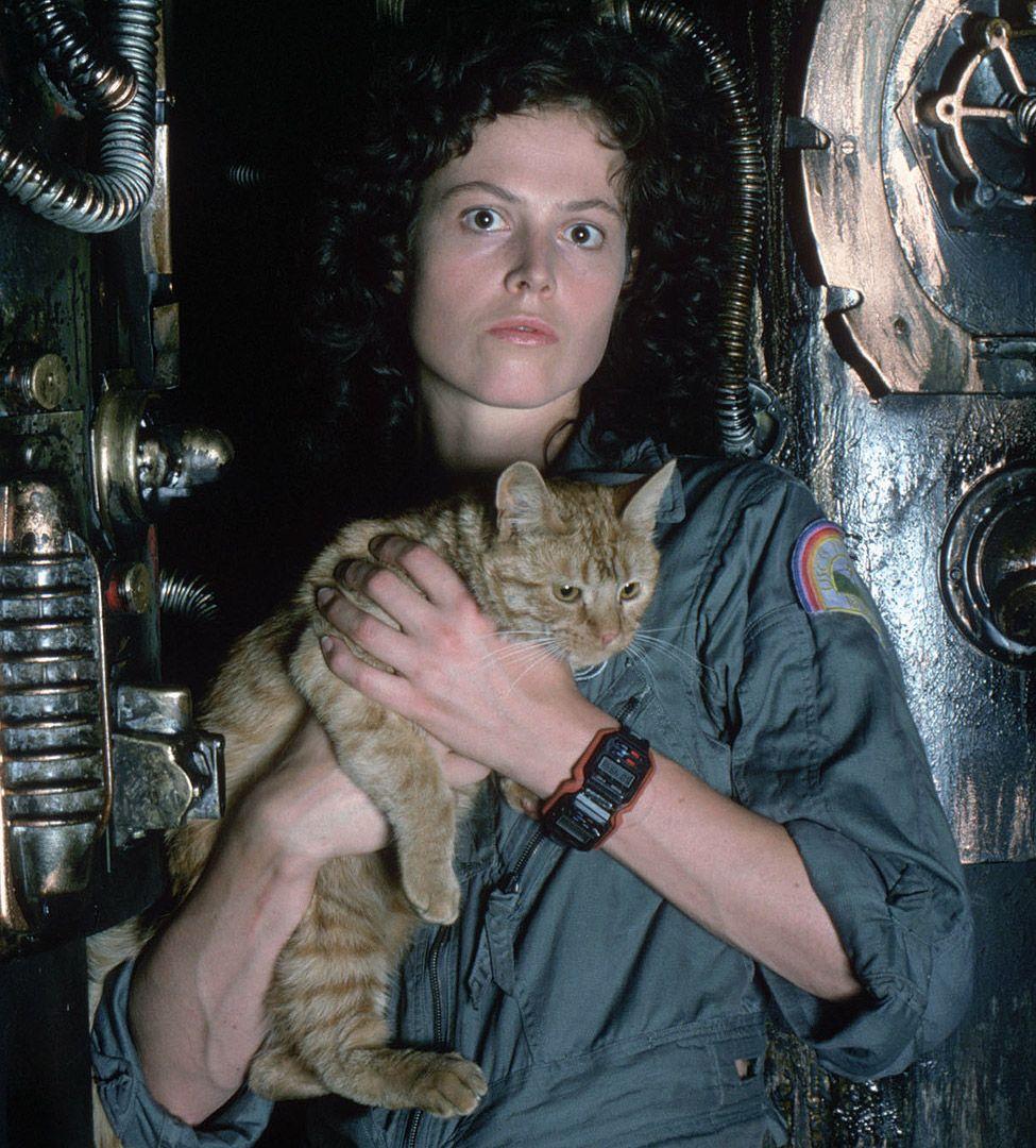"Alien Jones (or ""Jonesy"") is the pet cat of Ellen Ripley"