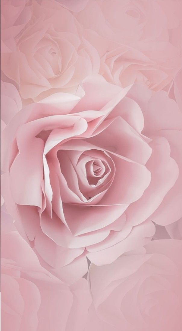 Pin By Lisa Liebel On Wallpapers Cute Flower Wallpapers Rose Wallpaper Flower Wallpaper