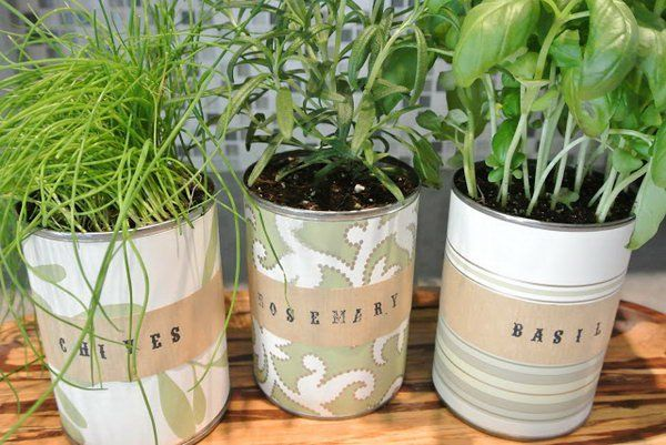25 Awesome Indoor Garden Herb Diy Ideas 8