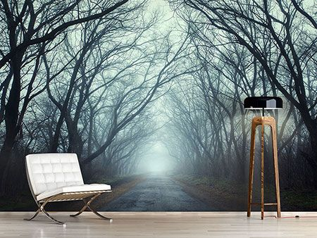 Raumansicht Wohnzimmer Fototapete Nebelwald Lebensräume gestalten
