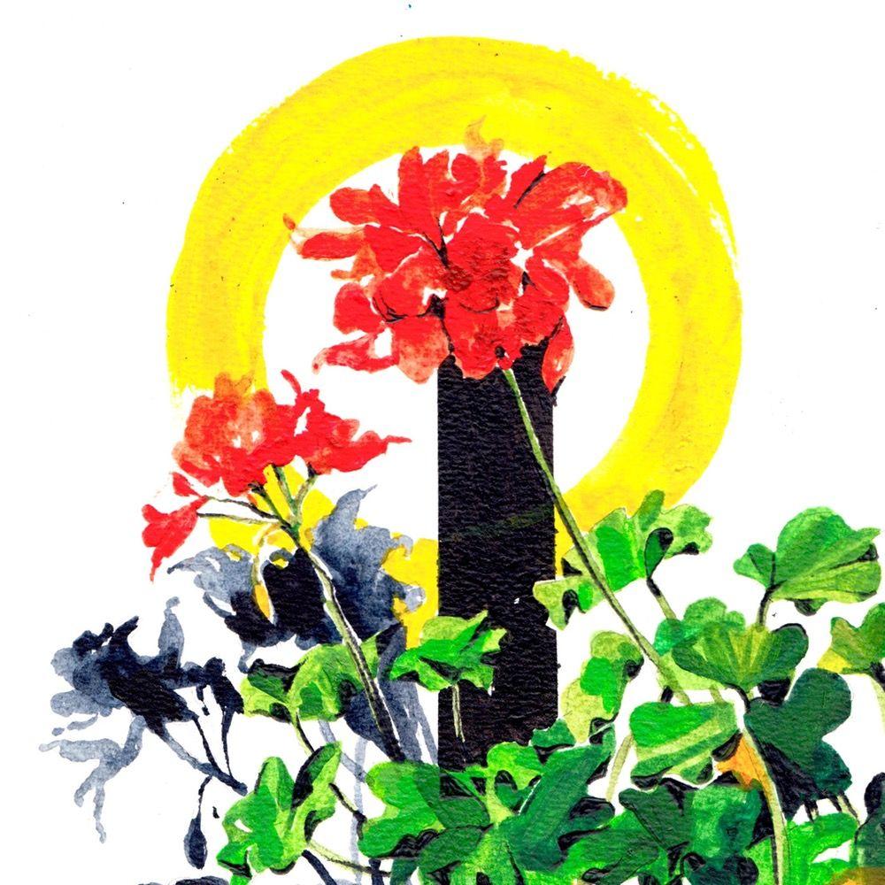 Evie Cahir — Geraniums Acrylic and pencil on paper.
