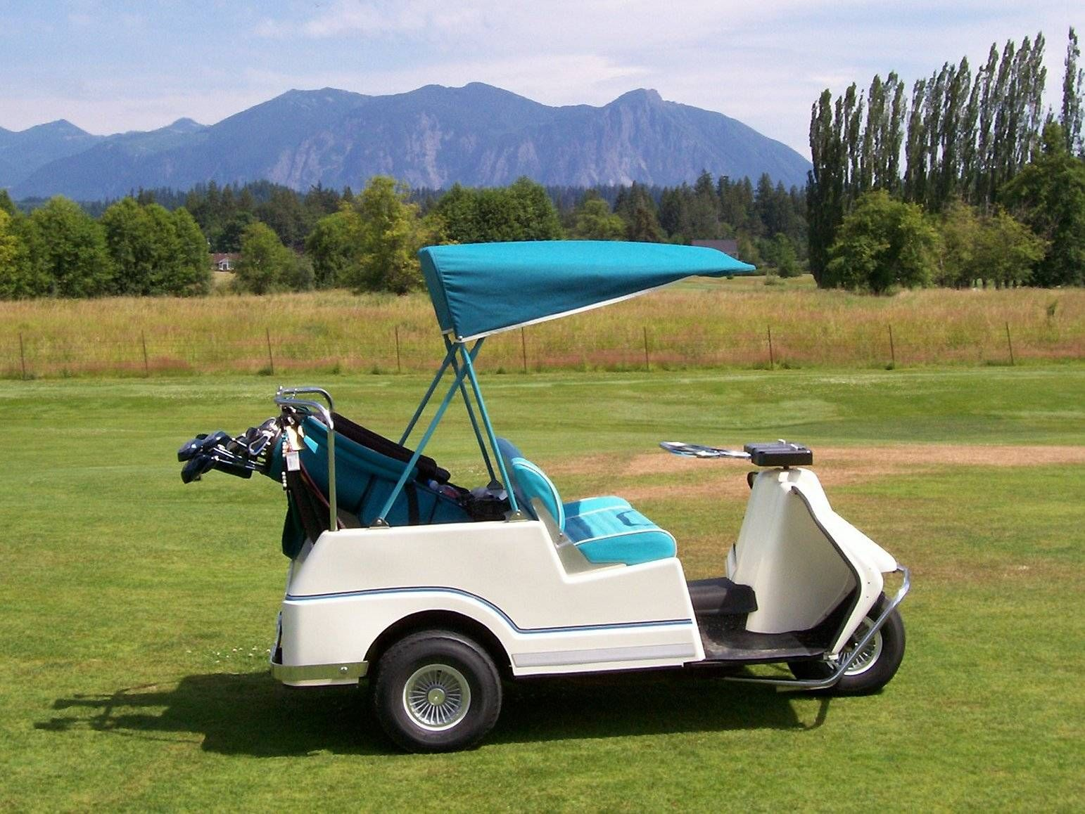 Gas Golf Carts, Custom Golf Carts, Old Harley Davidson, Golf Cart Parts,