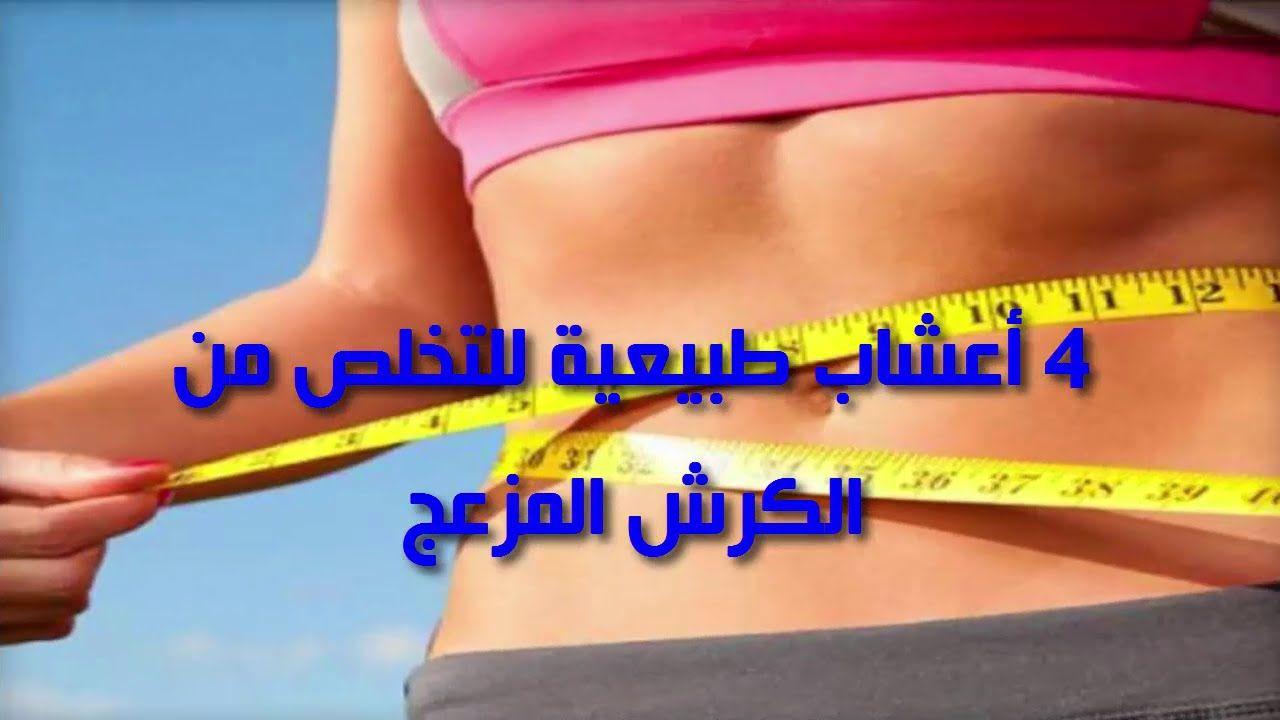 4 أعشاب طبيعية لتخسيس الكرش وعلاج السمنة Health Fitness Fitness Health