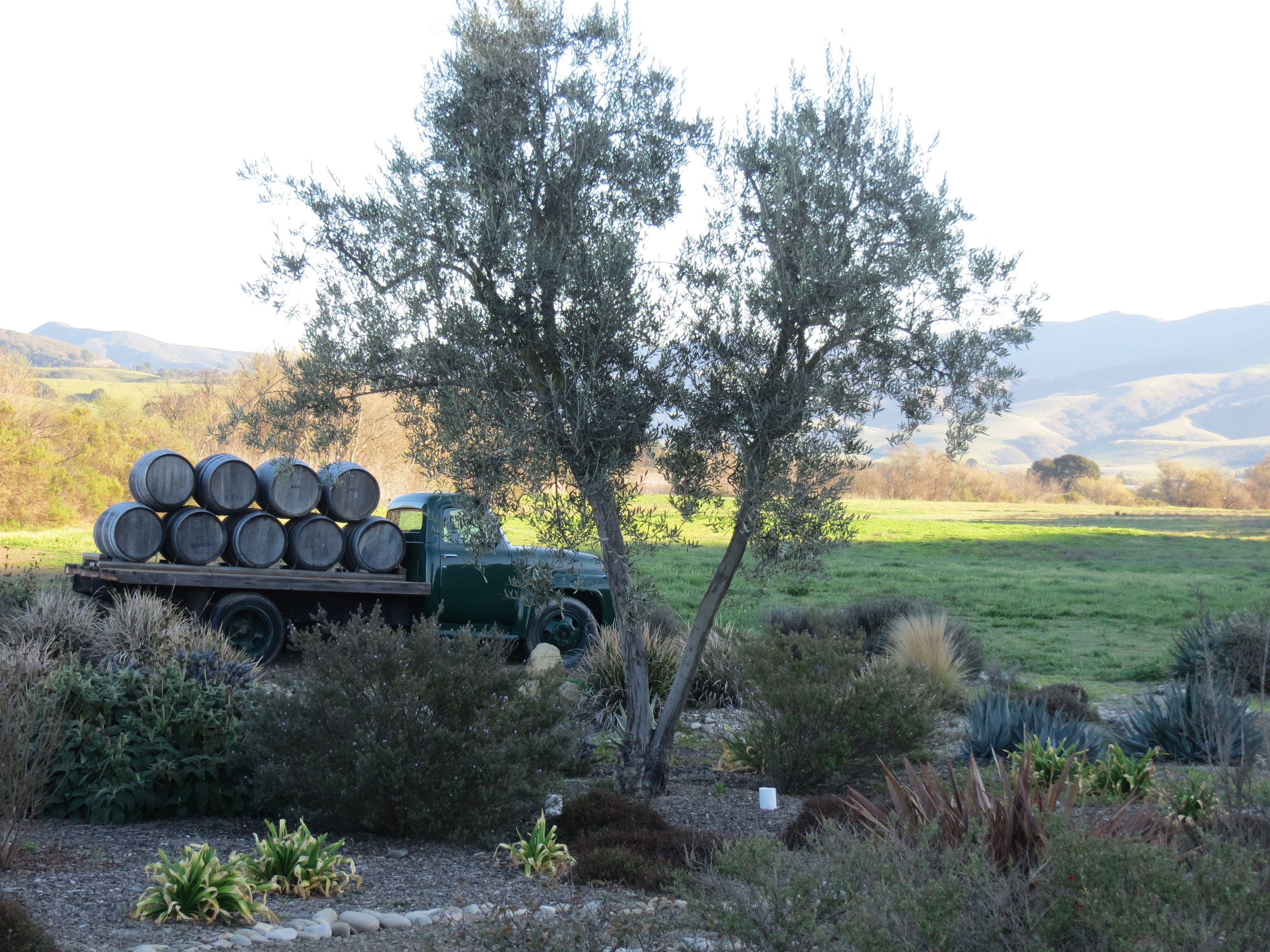 Semler from Santa Barbara wineries