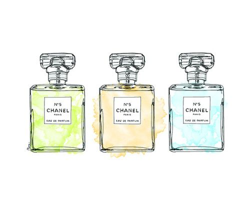 Chanel No 5 Perfume One Of My Two Chanel Scents I Wear One Everyday Chanel Perfume Bottle Chanel Perfume Chanel Art