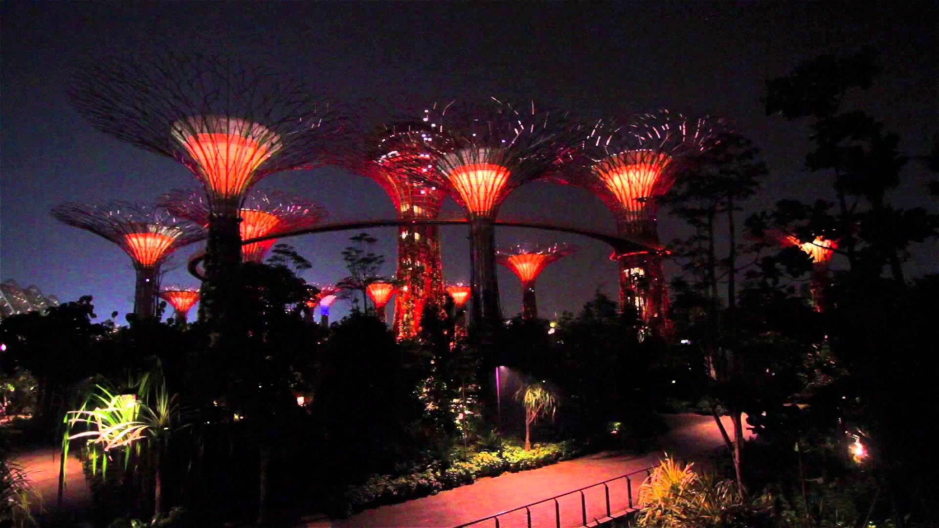 Singapore Gardens By The Bay Light Show | My Hometown   Singapore |  Pinterest | Bay Lights And Singapore