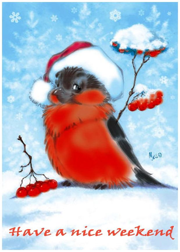 Открытки снегирь, подарок прикольные