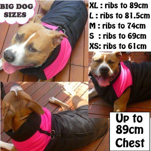 Details About Large Dog Coat Vest Jacket Big Dog Warm Coat Staffy