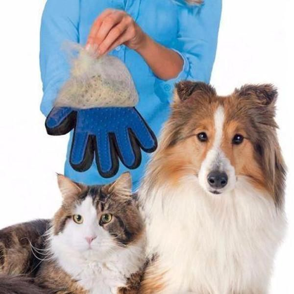 Magical Pet Touch Grooming Gloves in 2019 Pet Products