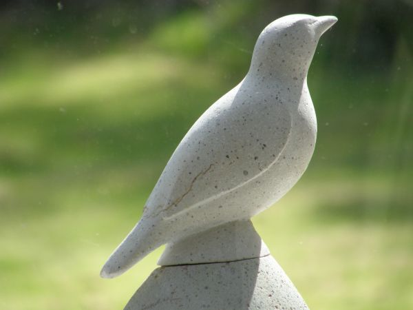Stone carved cat google search vogels pinterest