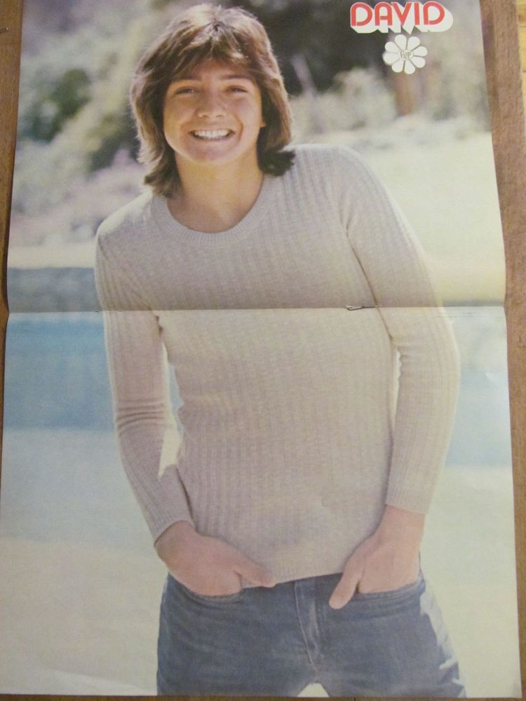 david cassidy two page vintage