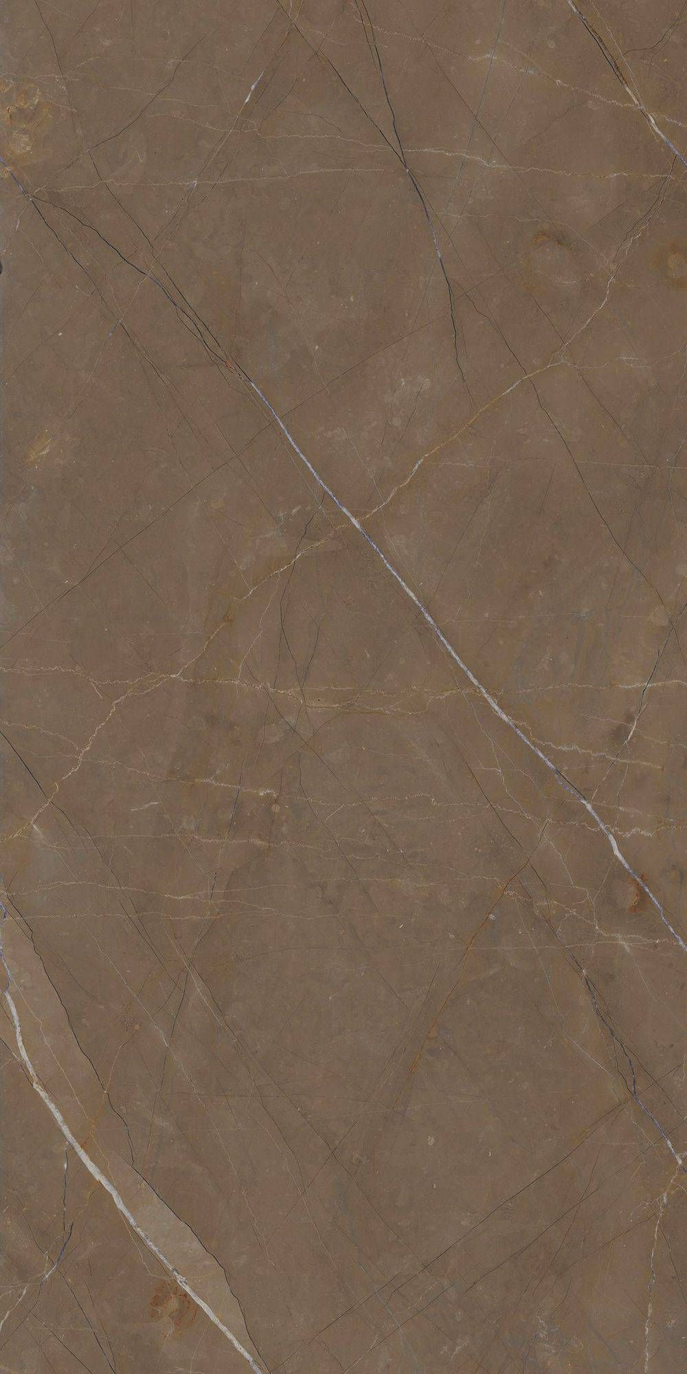 Marble Lab Glam Bronze Marble Texture Texture Stone Texture