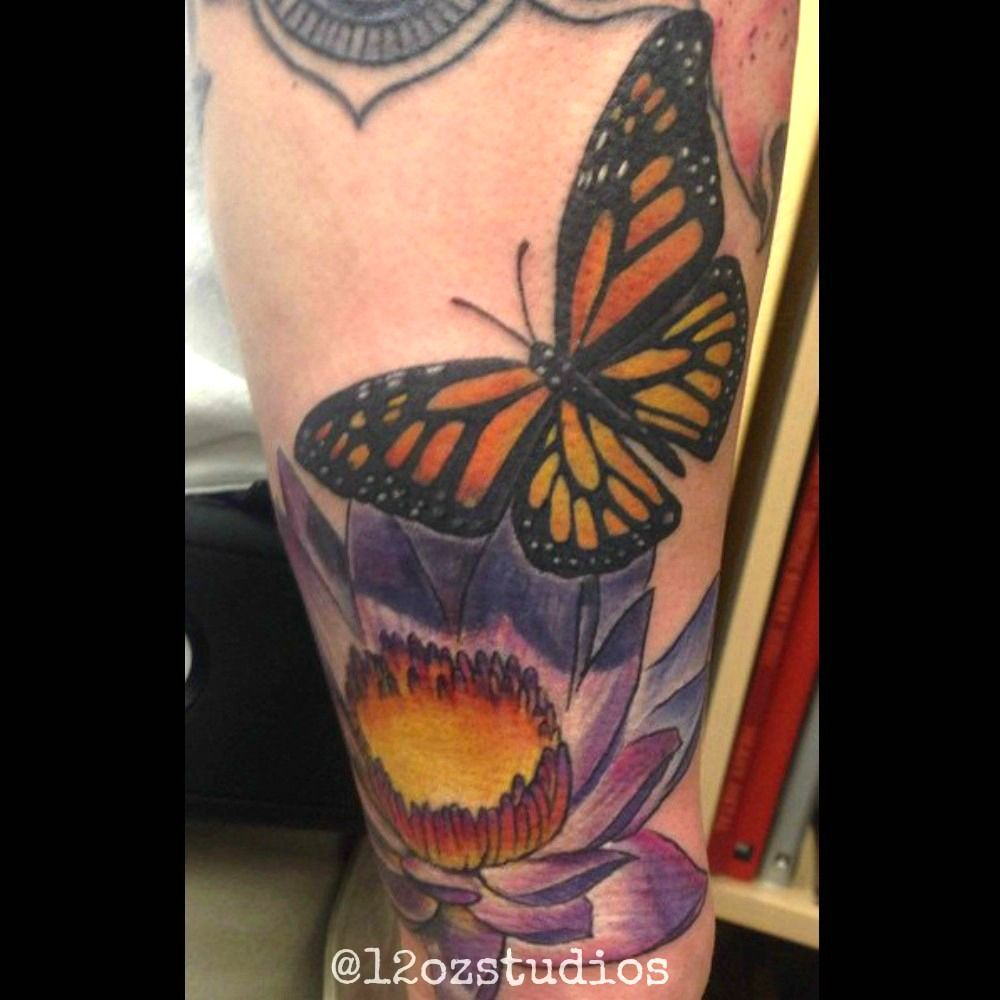 Beautiful full color monarch butterfly and water lily ...