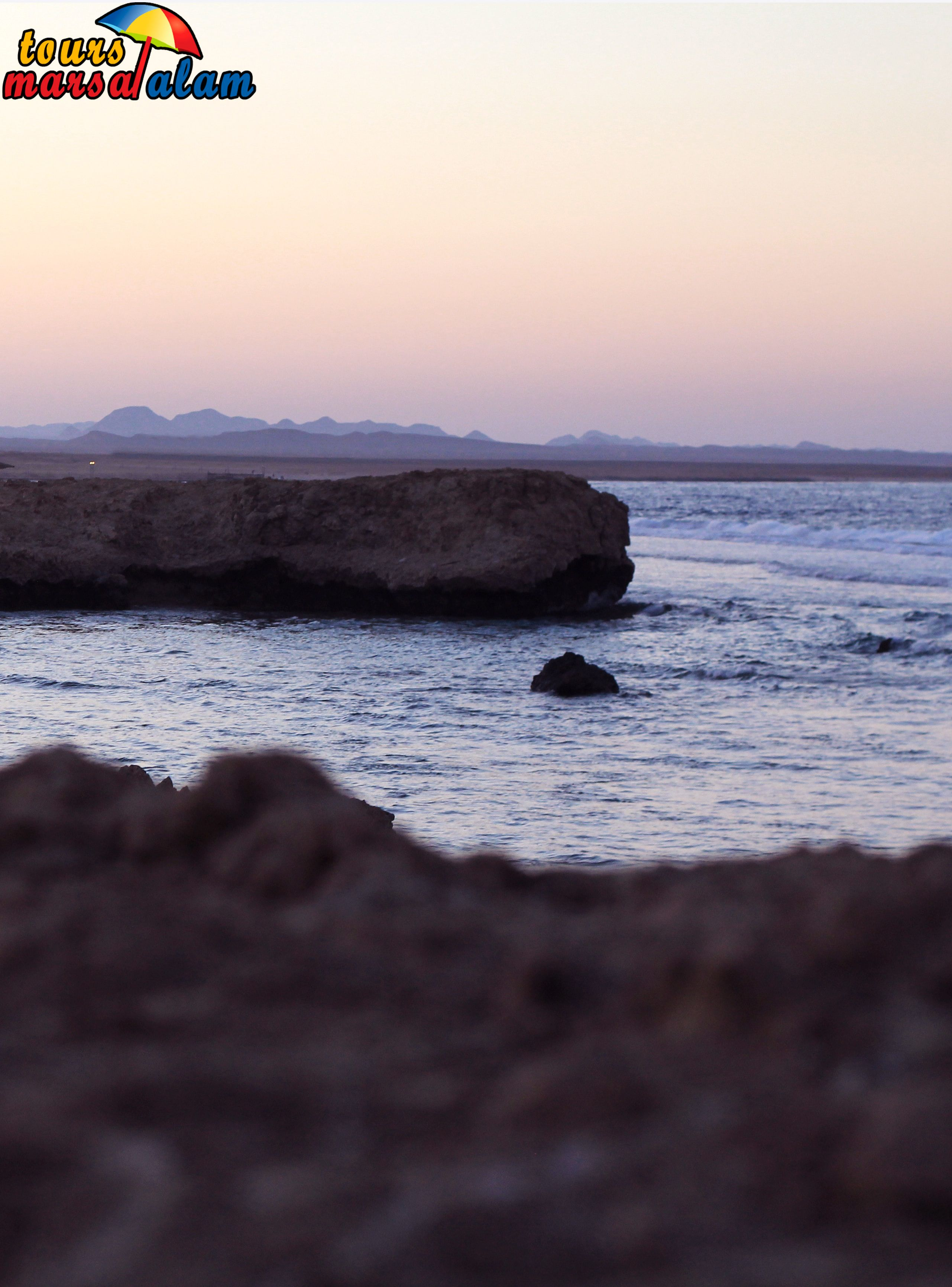 Diving Tours From Marsa Alam In 2020