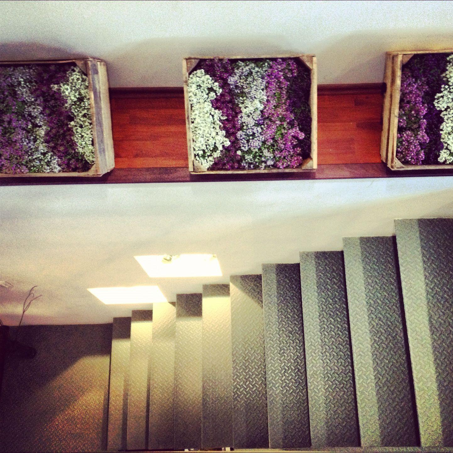 Escalera provenzal