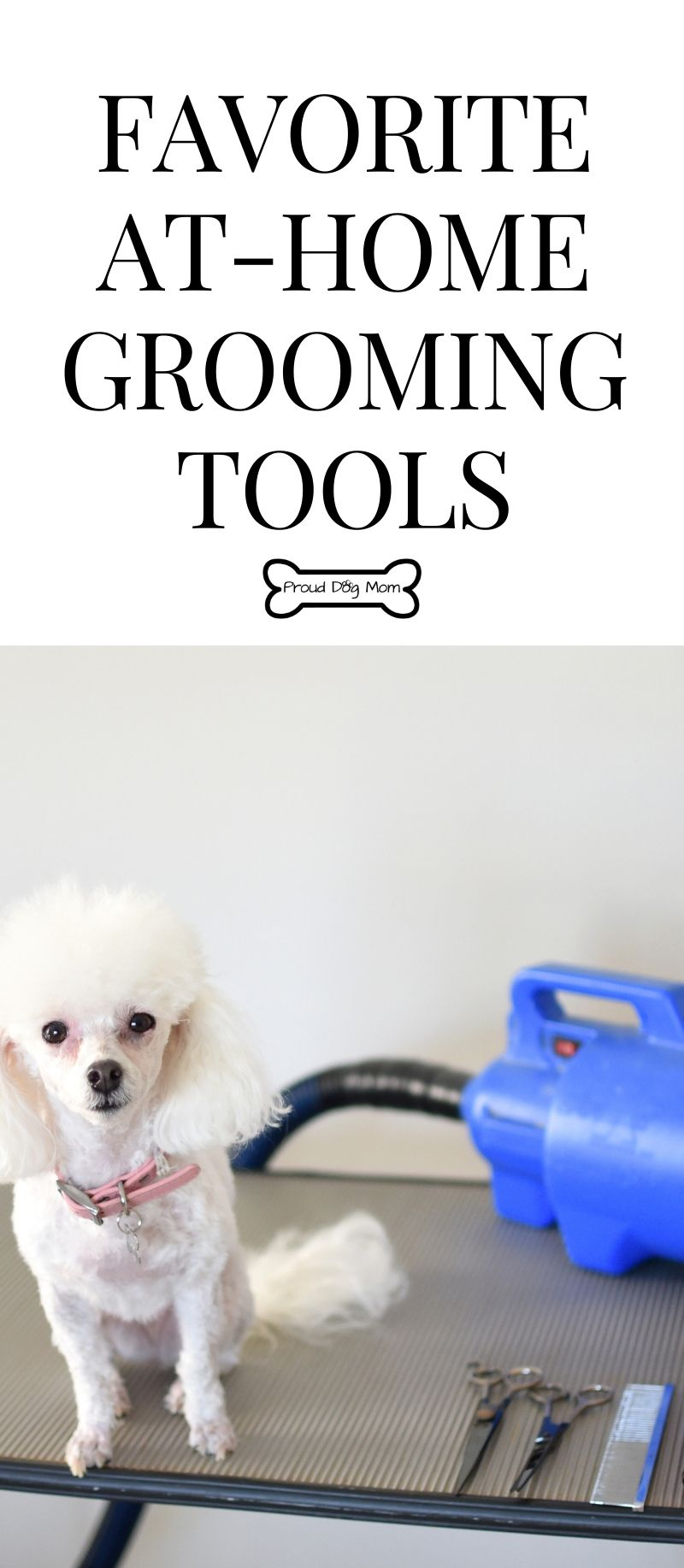 My Favorite At Home Grooming Tools Dog Grooming Tools Dog