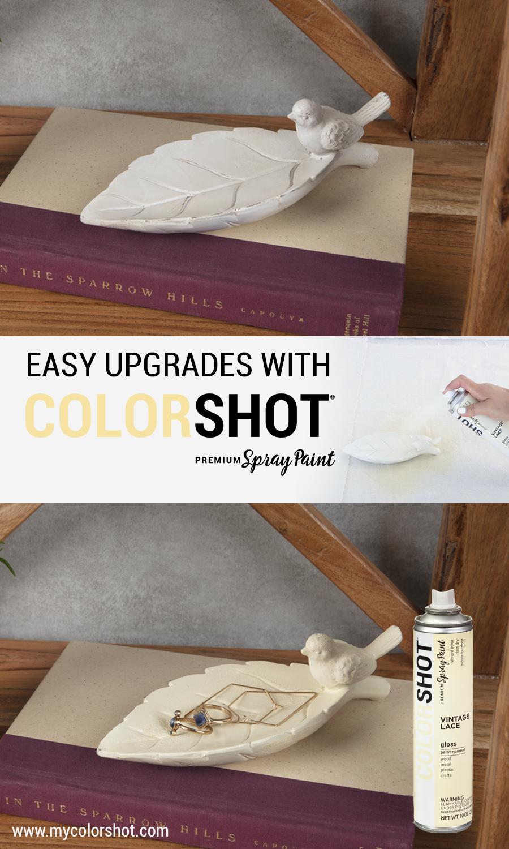 Renew Ceramic Home Decor With Colorshot Premium Spray Paint In About 10 Minutes Colorshot Premium Spray Paint Is Ava Diy Spray Paint Spray Paint Decor Project