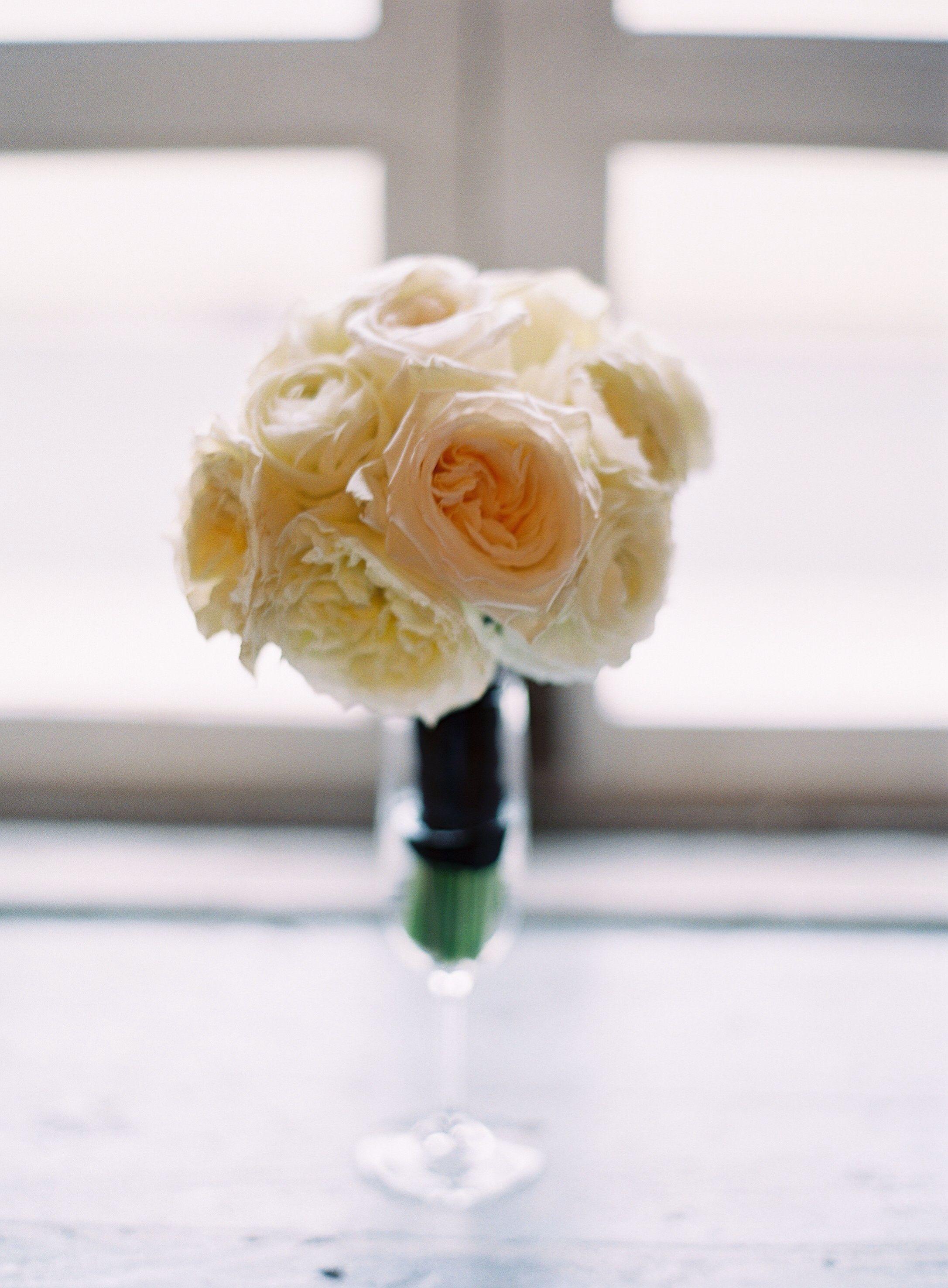 White rose - floreal design