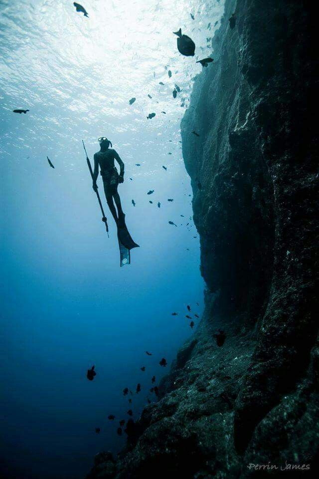 Spearfishing, Scuba Diving Photography, Sea