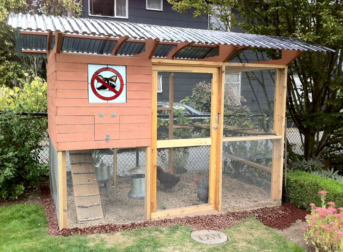 Curved Roof On This Seattle Chicken Coop Built With The Garden Coop Plans Beautiful Backyards Backyard Chicken Coops Urban Chicken Coop
