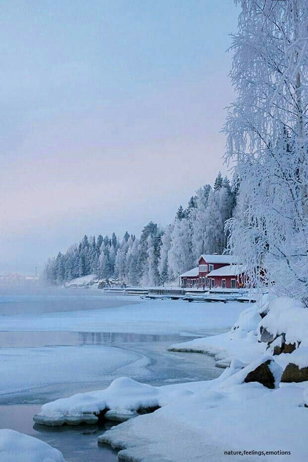 Winter at the lakeshore