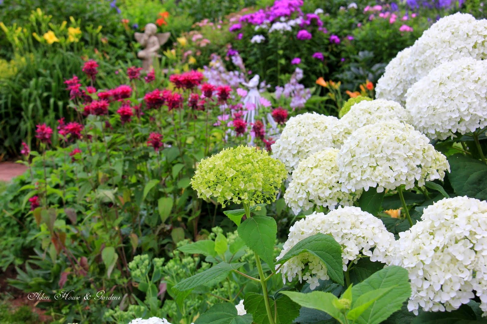 Aiken House Gardens A Tour Around Our Mid August Garden Garden
