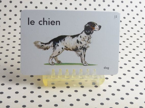 Vintage 1962 Dog Picture & Word Flash Card by