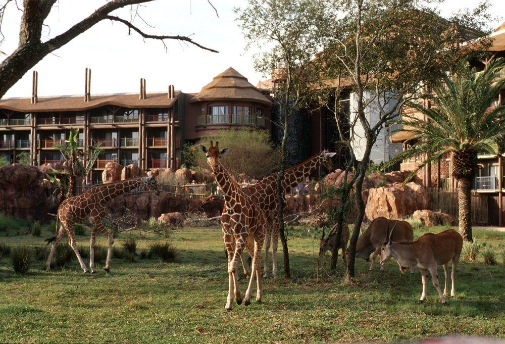 Disney's Wilderness Lodge Walt Disney World