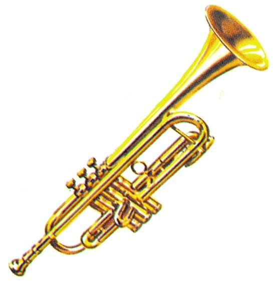 images of musical instruments  Different musical