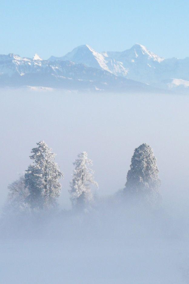 Einer, Mönch und Jungfrau über dem Nebelmeer – Catherine Leutenegger, Gerzense…