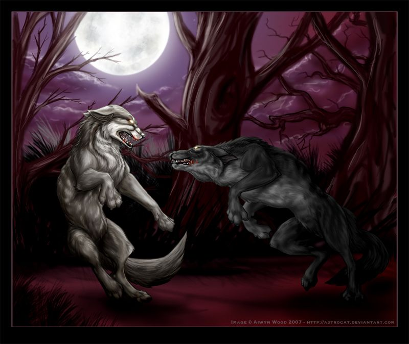 A Werewolf And A Lykos Fighting In The Woods Near The Great Mound
