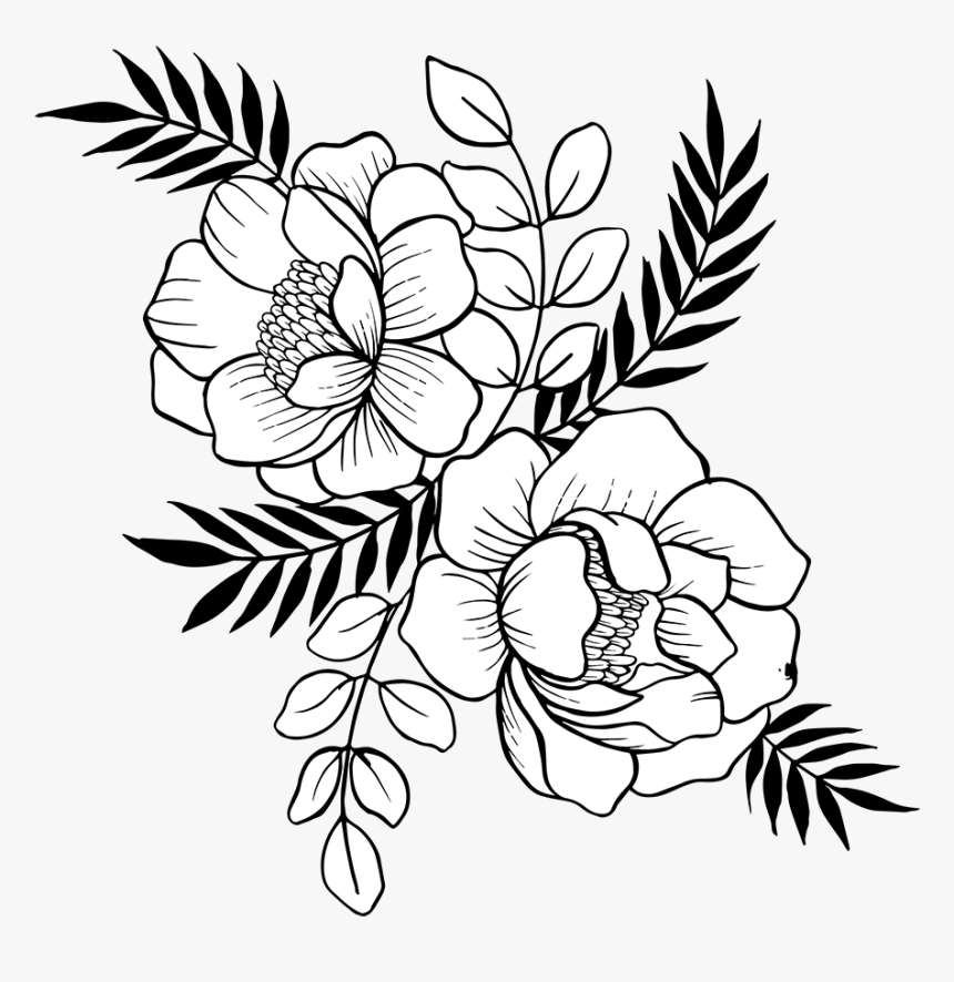 Hand Drawn Flower Png Transparent Png Is Free Transparent Png Image To Explore More Similar Hd Image On Pngi Flower Drawing Hand Drawn Flowers Floral Drawing