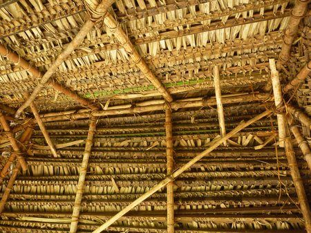 Building A Traditional Palm Leaf Roof Natural Building Roof Tiki Hut