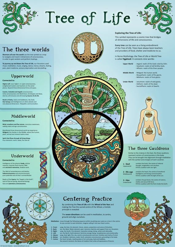 Tree of Life, ecofriendly A3 Print, Wall Art Poste
