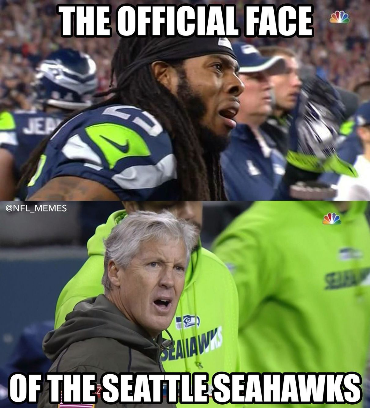 29c6462bf265ee582c1cfcf9aea4430f seahawks suck sports pinterest seahawks and packers,Seahawks Game Day Meme