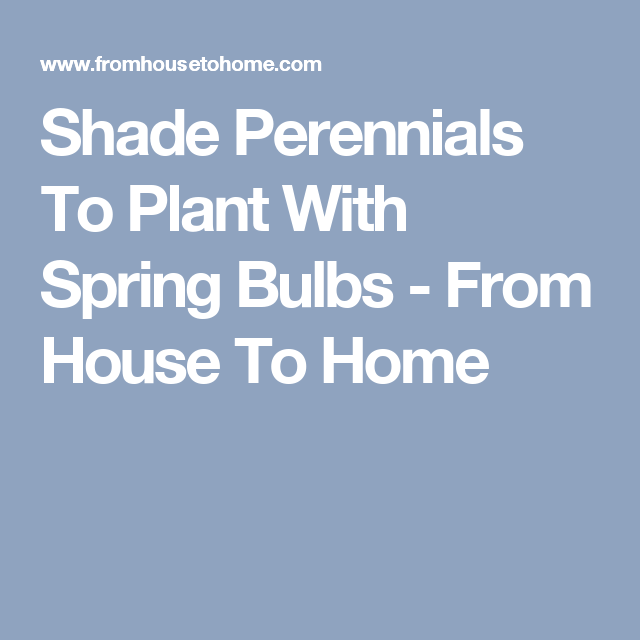 Shade Perennials To Plant With Spring Bulbs - From House To Home