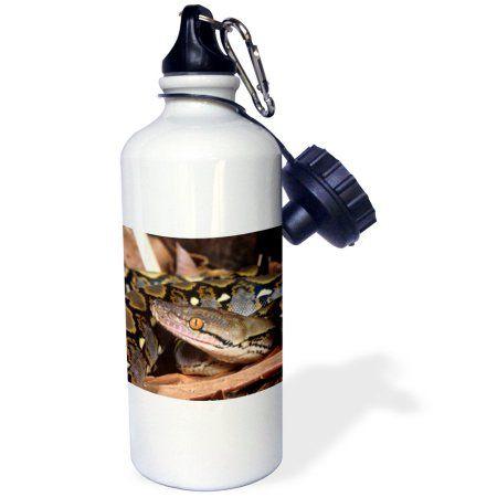 3dRose Reticulated Python snake - NA02 DNO0481 - David Northcott, Sports Water Bottle, 21oz, White