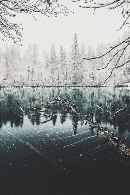 Imagen de winter, snow, and nature