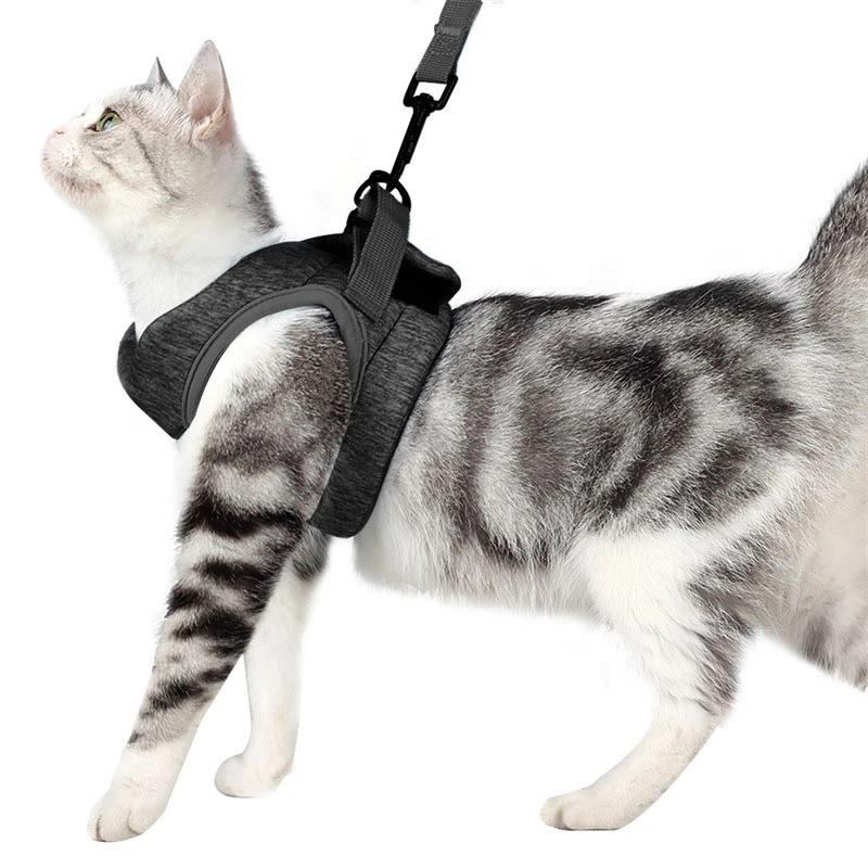 Escape Proof Cat Vest Harness And Leash Set Cat Universe