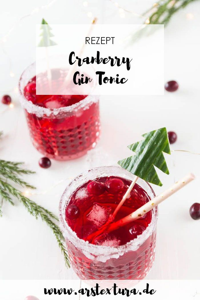 Photo of Christmas cranberry gin and tonic – aperitif for the Christmas menu