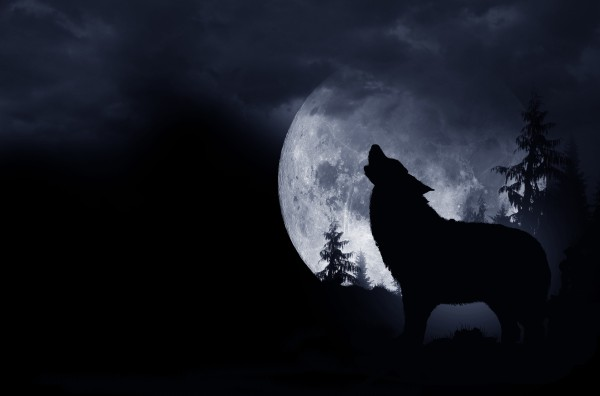 13 Full Moons, 2 Supermoons, And Rare Halloween Blue Moon