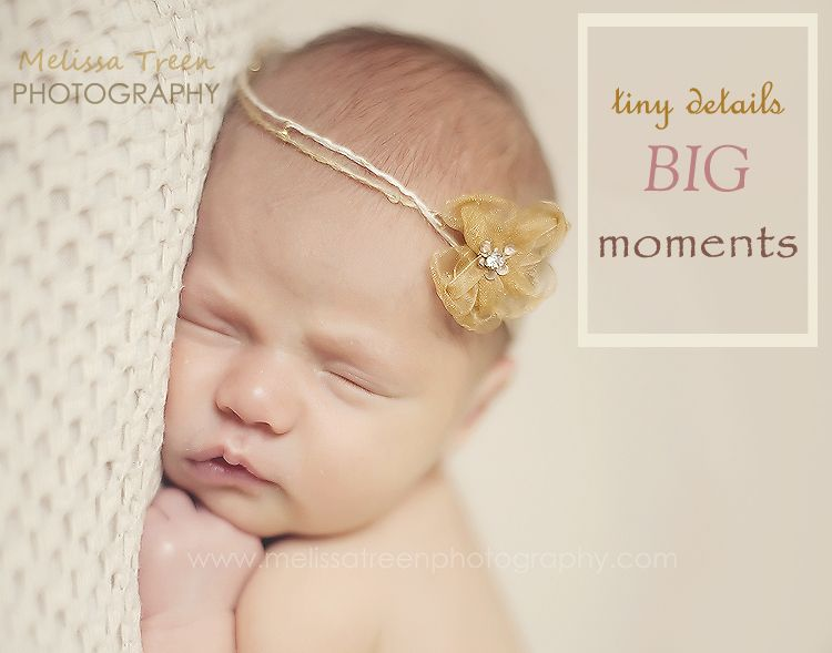 Quotes baby quotes baby pictures chapel hill newborn photographer high point newborn photography newborn portraits newborn baby photos