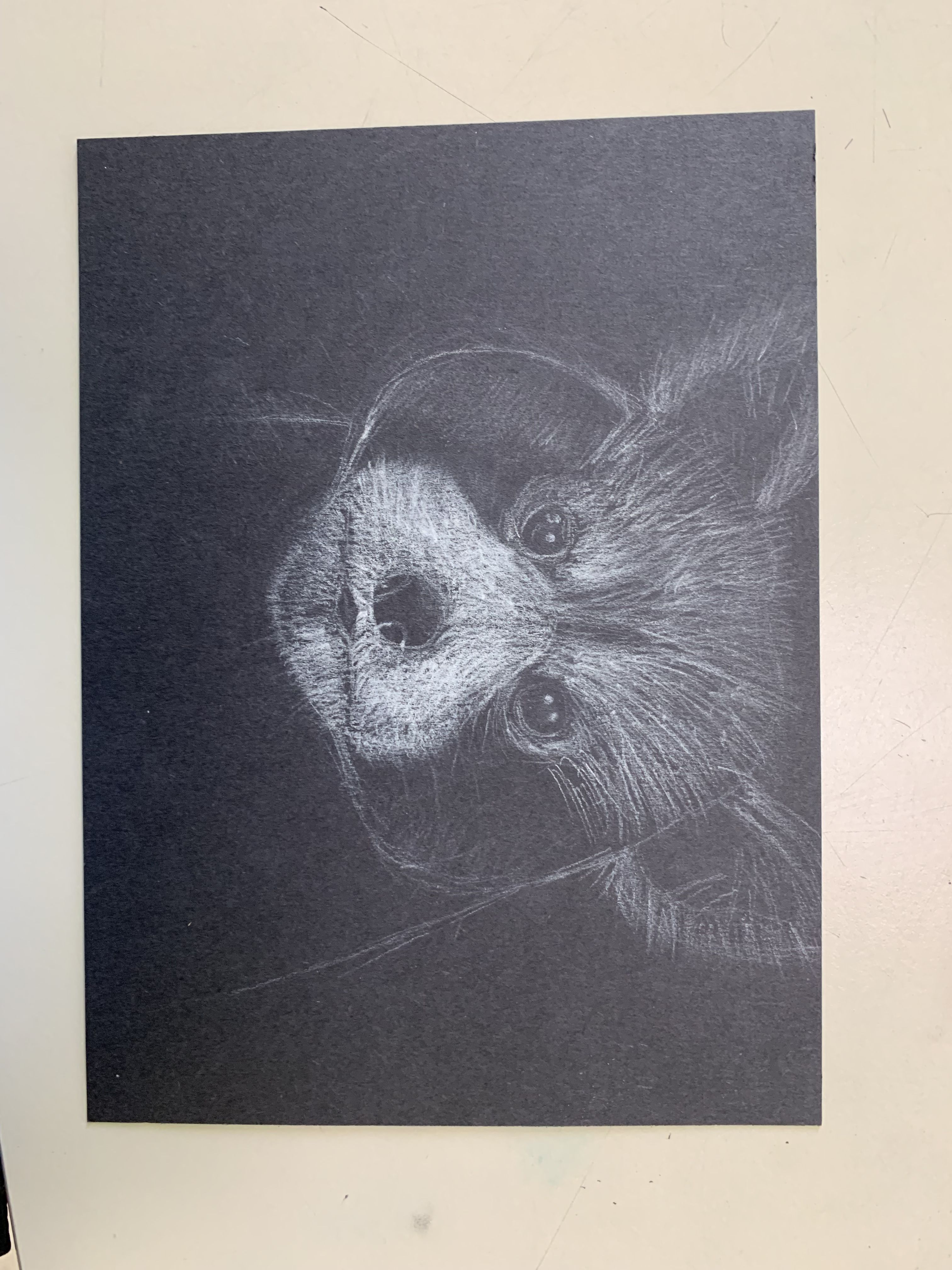 White Charcoal Drawing With Images