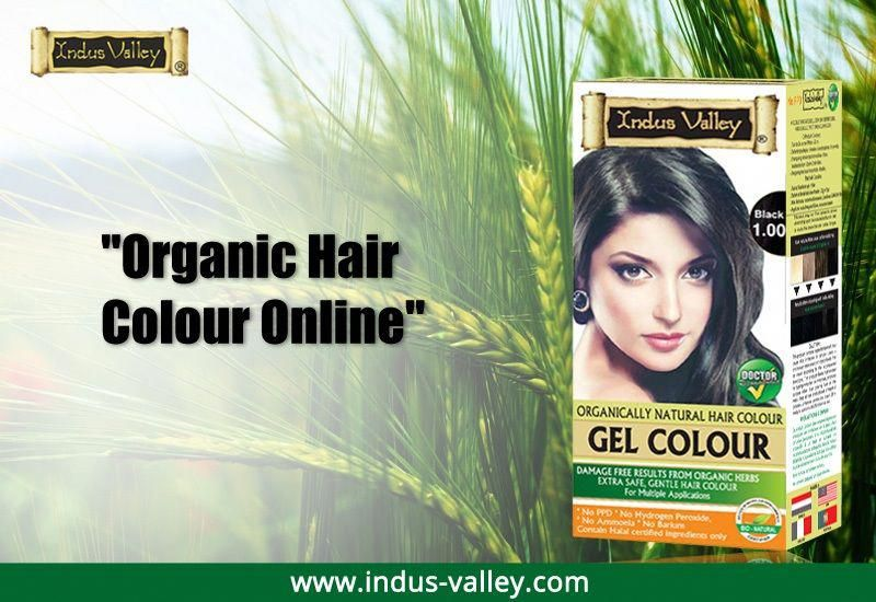 Buy Organic Hair Colour Online At Best Price From Indus Valley Best Chemical And Ammonia Free Hair Color Buy Organic Hair Color Hair Color Herbal Hair Colour