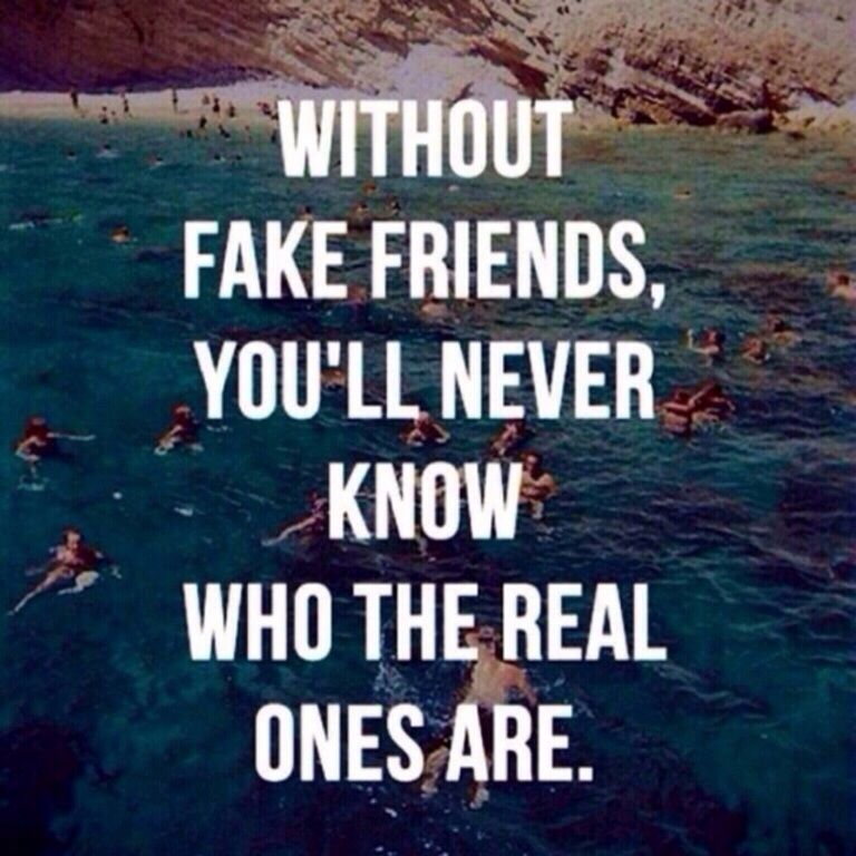 Quotes For True Friends And Fake Friends: Thank You Fake Friends