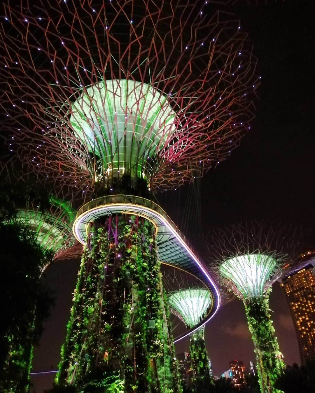 Nofilter Super Tree Grove At Night Supertreegrove Gardensbythebay Singapore Gardens By The Bay Outdoor Decor Outdoor