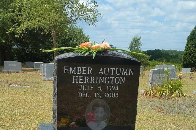 a76f7c35704 Elmwood Cemetery